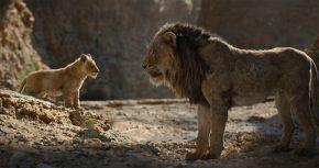 Simba és Zordon
