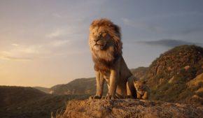 Apa és fia: Mufasa és Simba